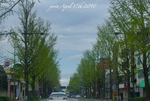 100417route20