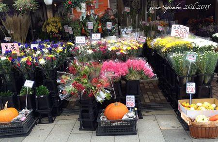 150926flowers